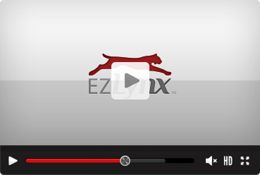 See the new EZLynx Search Feature in Action